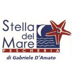 logo-stelladelmare
